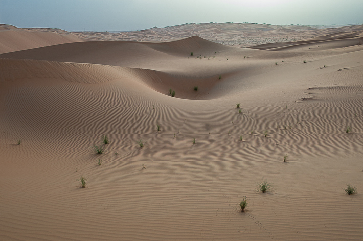 Best walk: dawn in the empty quarter Anantara, Abu Dhabi