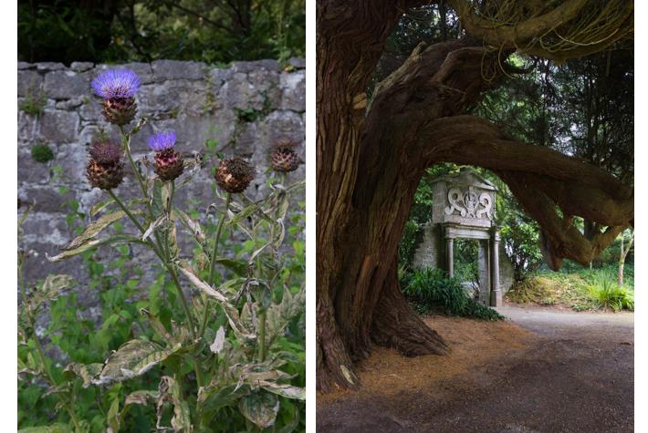 Walled garden; gate