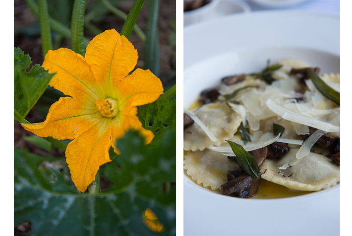 garden bloom; duck ravioli
