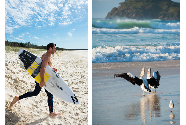 Parko and local birds