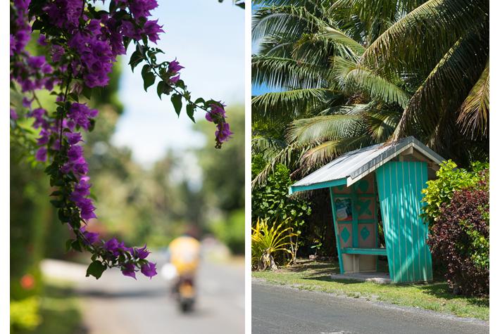 main road (Ara Tapu)