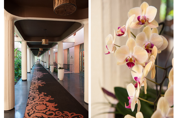 the orchid hallway