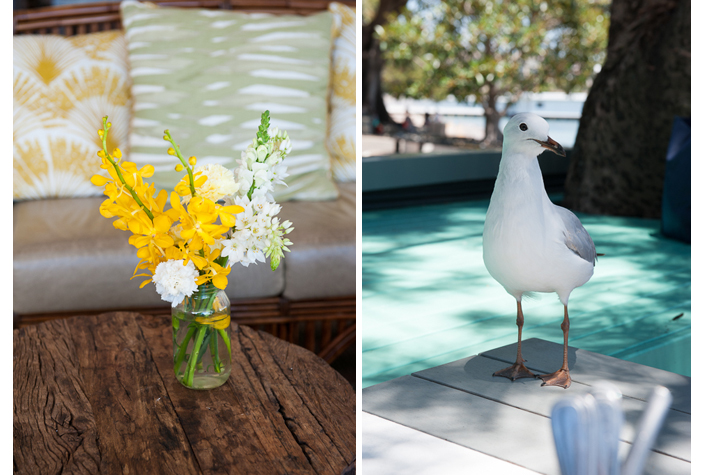flora & fauna on tables
