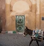 donkey door
