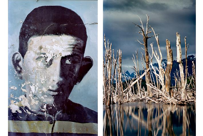 Political mural, dead trees, Ushuaia, Tierra del Fuego