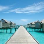 Maldives, Lamuu
